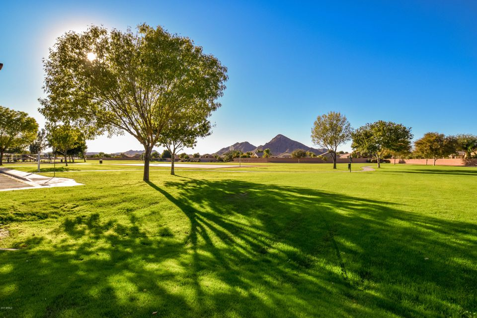 MLS 5696025 3879 W WHITE CANYON Road, Queen Creek, AZ 85142 Queen Creek San Tan Valley AZ Scenic