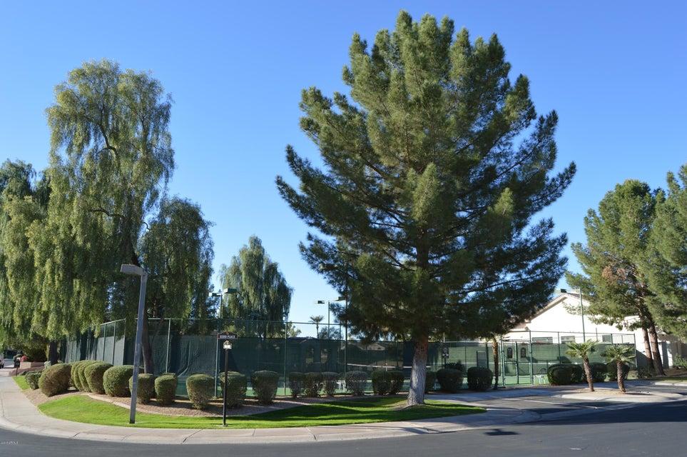 MLS 5672936 8084 E Cortez Drive, Scottsdale, AZ 85260 Scottsdale AZ Scottsdale Country Club
