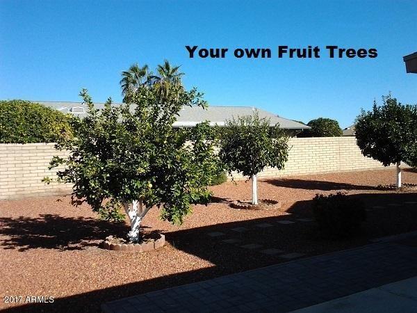 MLS 5696931 7930 E NATAL Avenue, Mesa, AZ 85209 Mesa AZ Sunland Village East