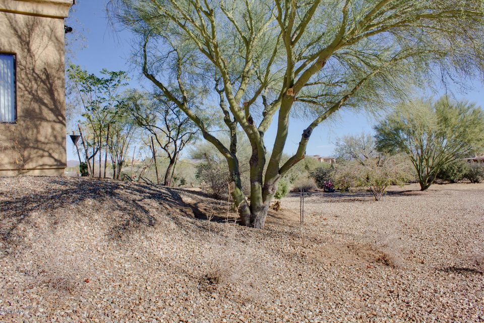 33205 N 138TH Street Scottsdale, AZ 85262 - MLS #: 5702822