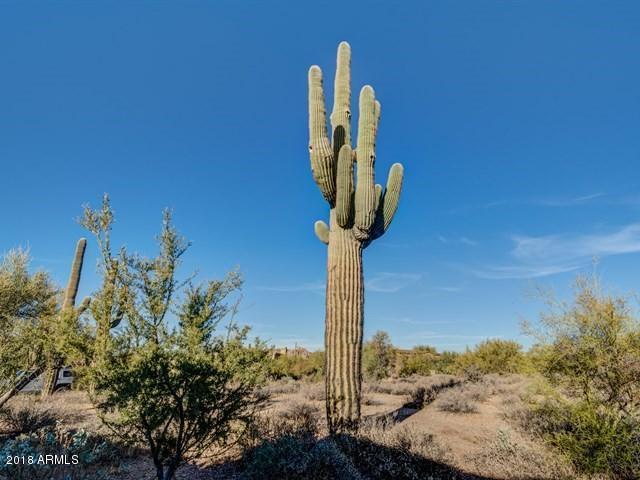 7397 E LOWER WASH Pass Scottsdale, AZ 85266 - MLS #: 5702294