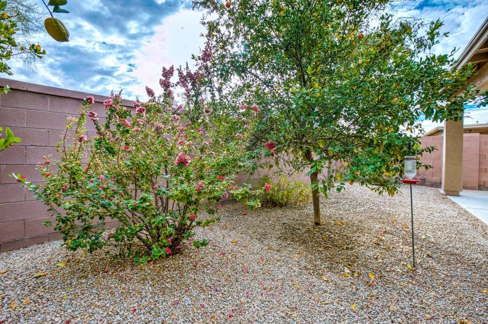 MLS 5708025 6811 S GRANITE Drive, Chandler, AZ 85249 Chandler AZ Solera