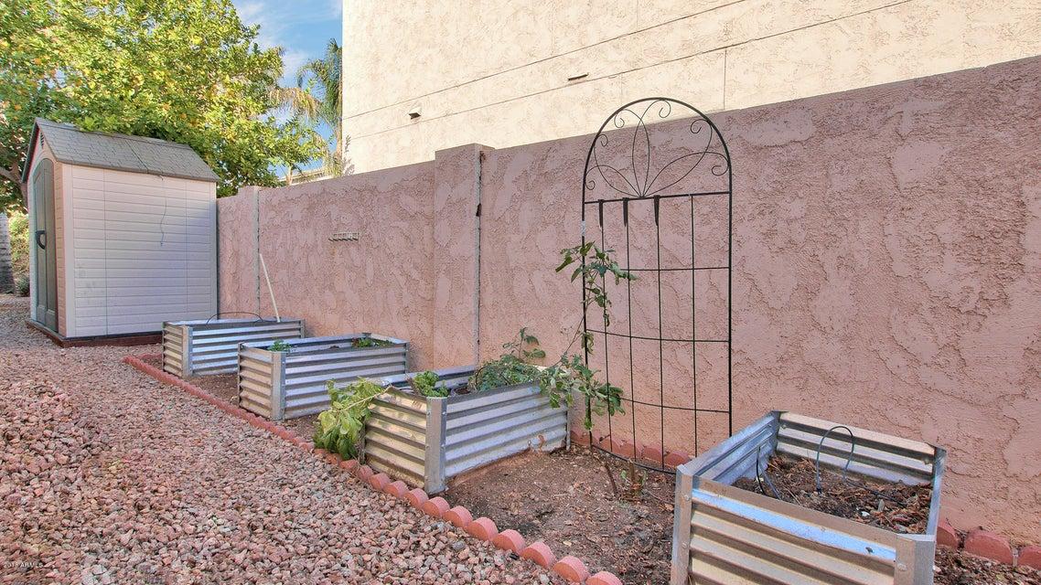 MLS 5711274 1658 E LEXINGTON Avenue, Gilbert, AZ 85234 Gilbert AZ Val Vista Lakes