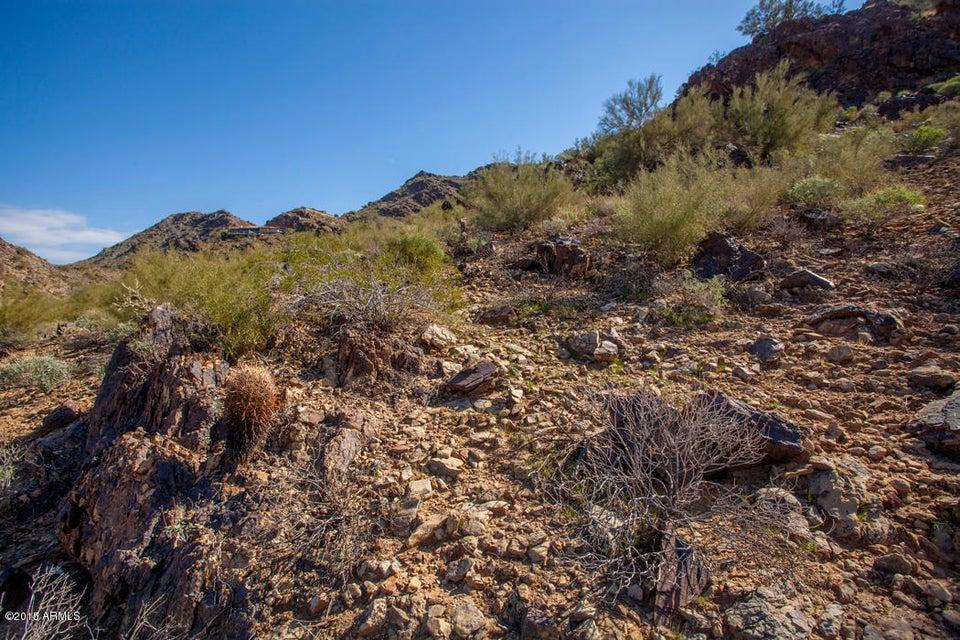 Additional photo for property listing at 5211 E Cheney Drive 5211 E Cheney Drive Paradise Valley, Arizona,85253 Hoa Kỳ