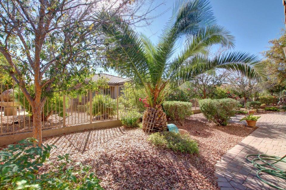 MLS 5717601 4141 E NARROWLEAF Drive, Gilbert, AZ Gilbert AZ Power Ranch
