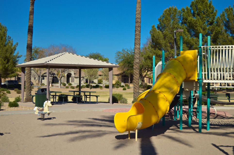 MLS 5716006 2390 W MULBERRY Drive, Chandler, AZ 85286 Chandler AZ Pecos Ranch