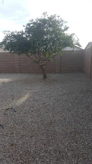 MLS 5718941 11169 E Frog Tanks Court, Gold Canyon, AZ 85118 Gold Canyon AZ Peralta Trails