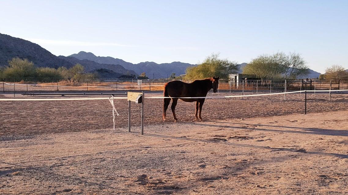 MLS 5720480 51400 W MOCKINGBIRD Lane, Maricopa, AZ 85139 Maricopa AZ Thunderbird Farms