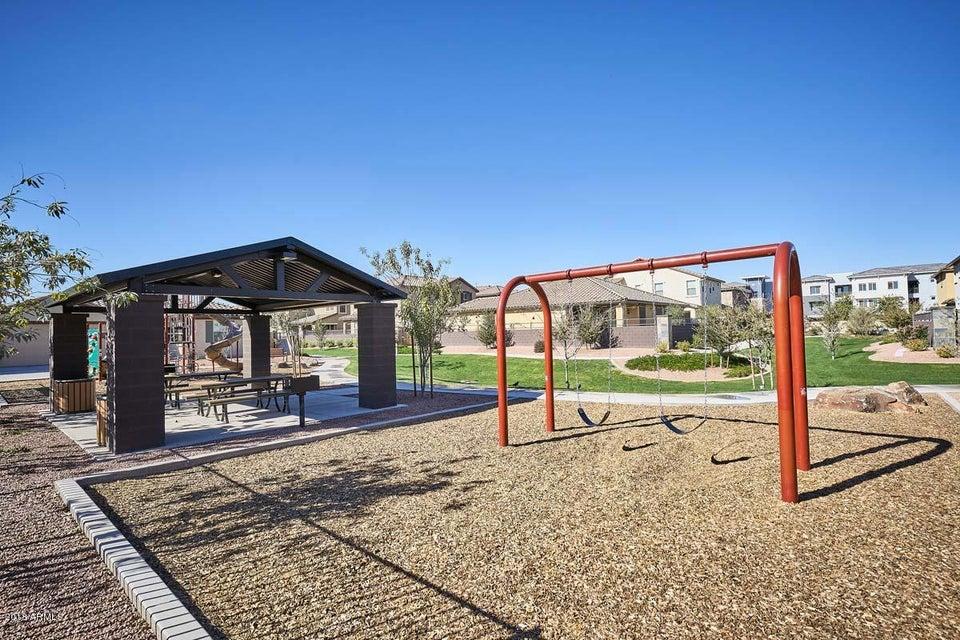 MLS 5718175 110 E BLUEJAY Drive, Chandler, AZ 85286 Community Pool