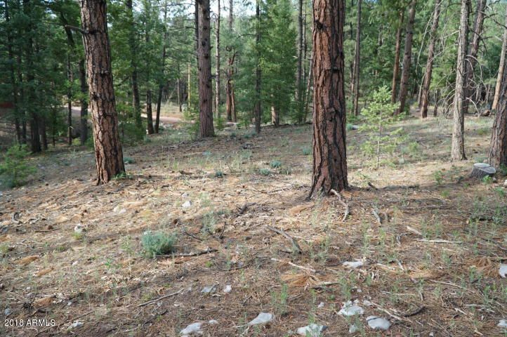 MLS 5722481 112 S INDIAN Trail, Payson, AZ Payson AZ Equestrian