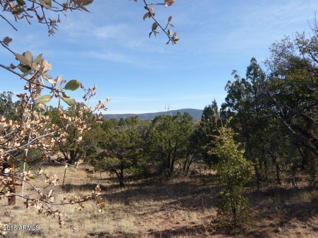 155 W Mail Trail Road Young, AZ 85554 - MLS #: 5722947