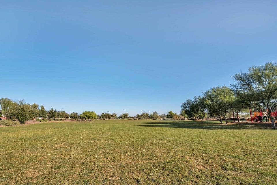 MLS 5723538 4620 W FLINT Street, Chandler, AZ 85226 Chandler AZ Wild Tree