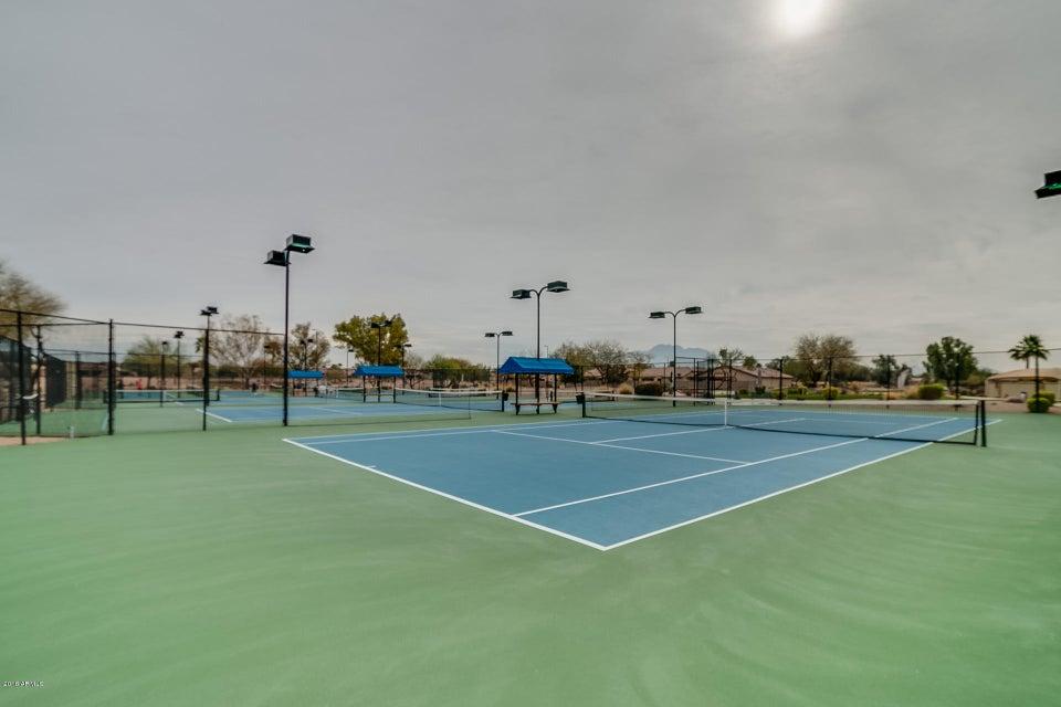MLS 5724923 3749 E PEACH TREE Drive, Chandler, AZ Community Pool