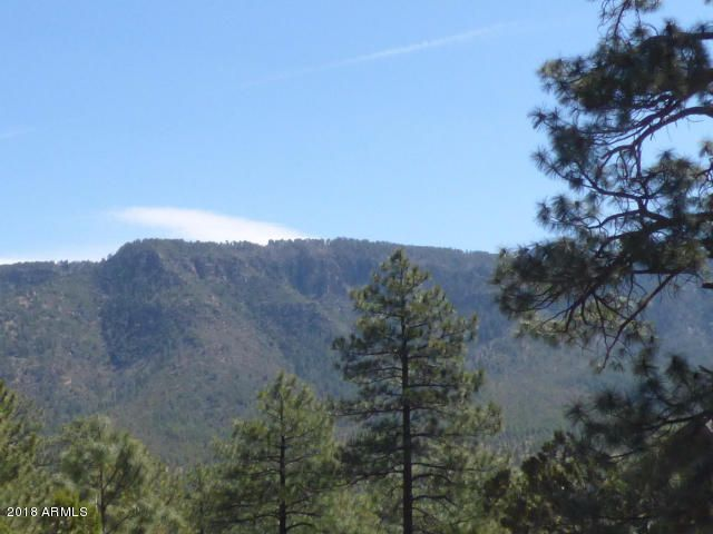 Lot #105 CANYON VIEW Pine, AZ 85544 - MLS #: 5728489