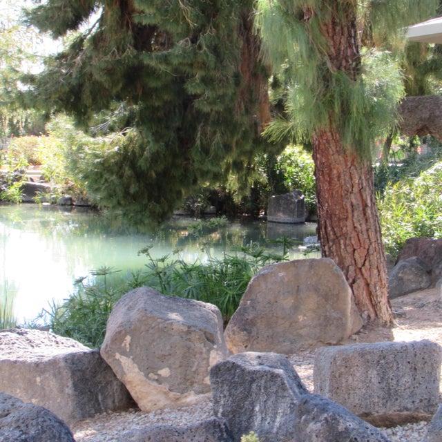 13817 N 99TH Drive Sun City, AZ 85351 - MLS #: 5733116