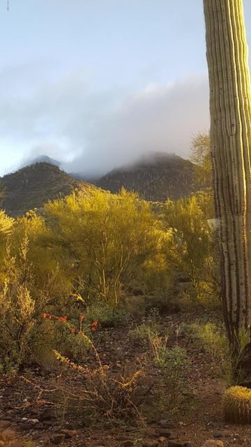 MLS 5733215 34611 N SUNSET Trail, Carefree, AZ 85377 Carefree AZ Carefree Foothills