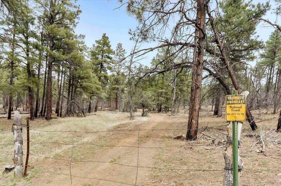 719 Old Standard Mill Road Show Low, AZ 85901 - MLS #: 5738913
