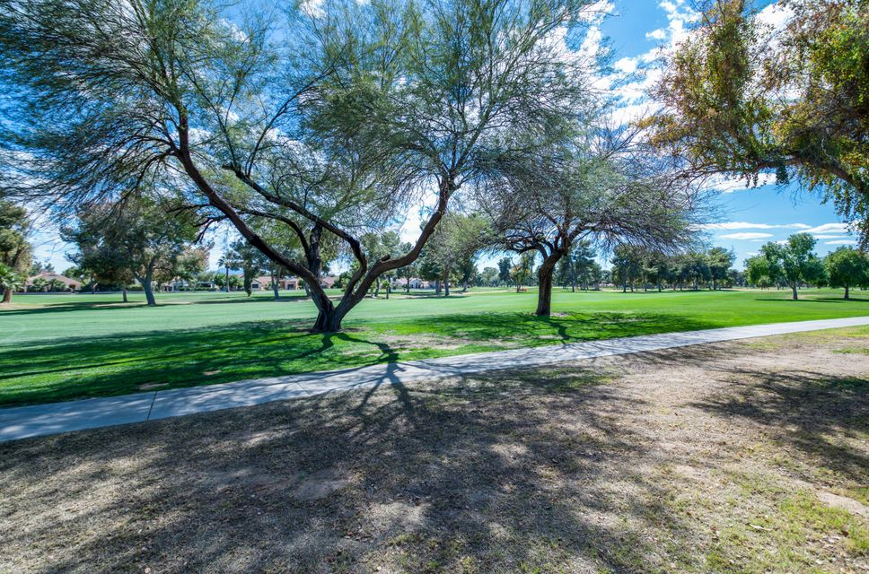 MLS 5737778 14211 W Greentree Drive, Litchfield Park, AZ 85340 Litchfield Park AZ Golf