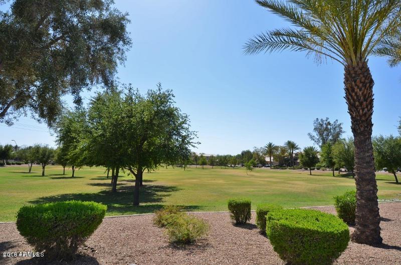 MLS 5738342 3662 E SAN REMO Avenue, Gilbert, AZ 85234 Gilbert AZ Carol Rae Ranch