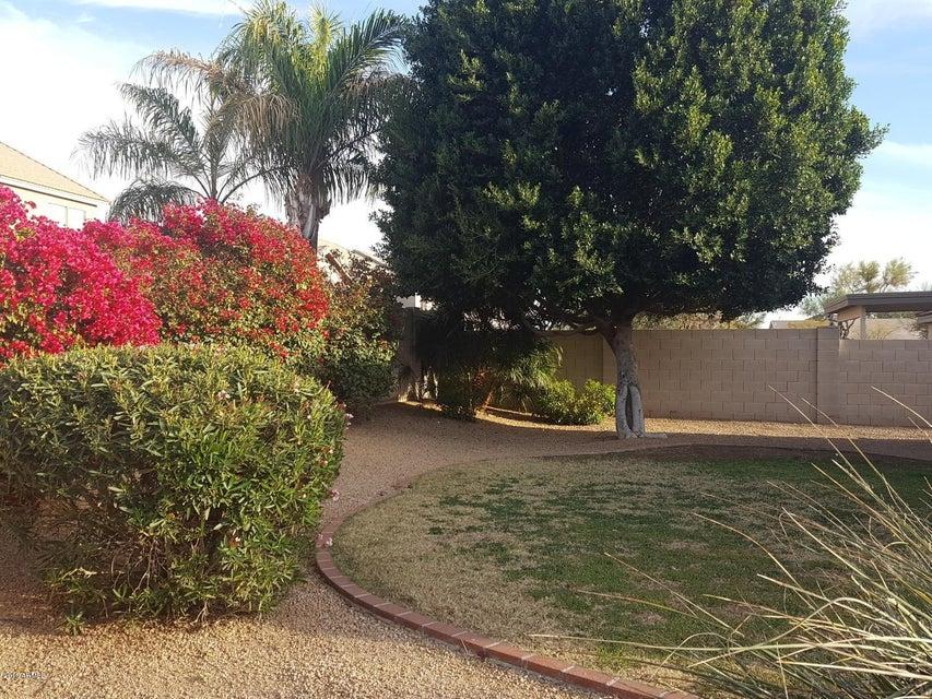 MLS 5738433 26223 N 41ST Way, Phoenix, AZ 85050 Phoenix AZ Tatum Highlands