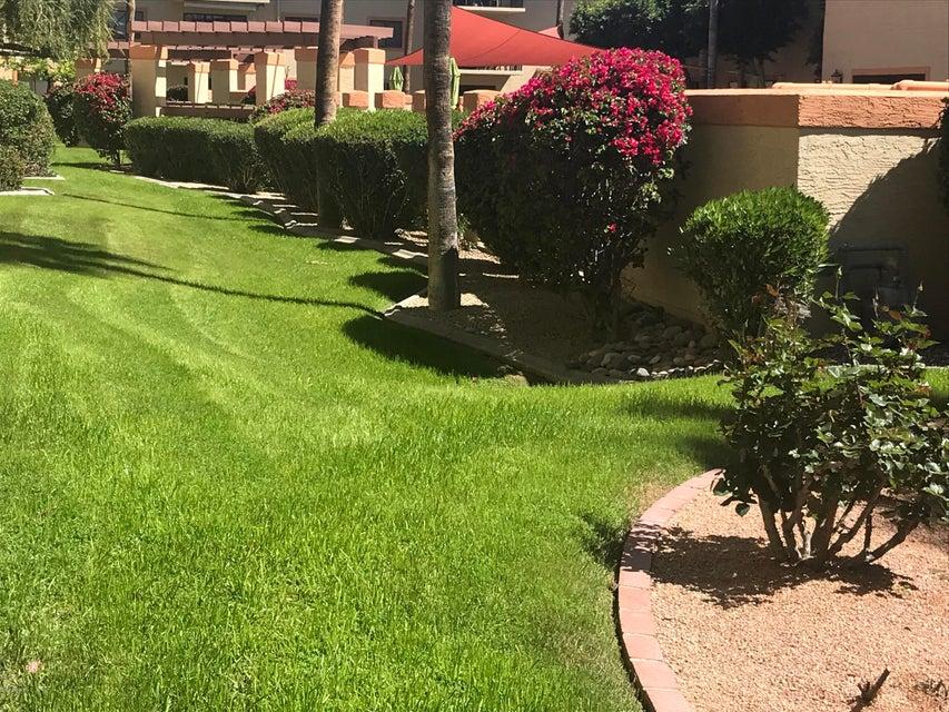 MLS 5739456 10330 W Thunderbird Boulevard Unit C117, Sun City, AZ 85351 Sun City AZ Condo or Townhome