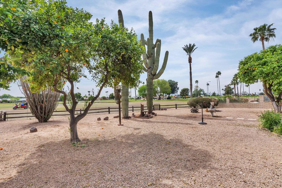 MLS 5740486 10625 W WHITE MOUNTAIN Road Building 10700, Sun City, AZ 85351 Sun City AZ Mountain View