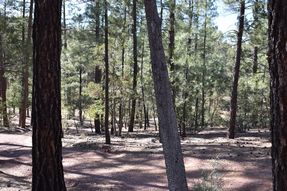 MLS 5743727 475 N COYOTE Trail, Payson, AZ Payson AZ Historic
