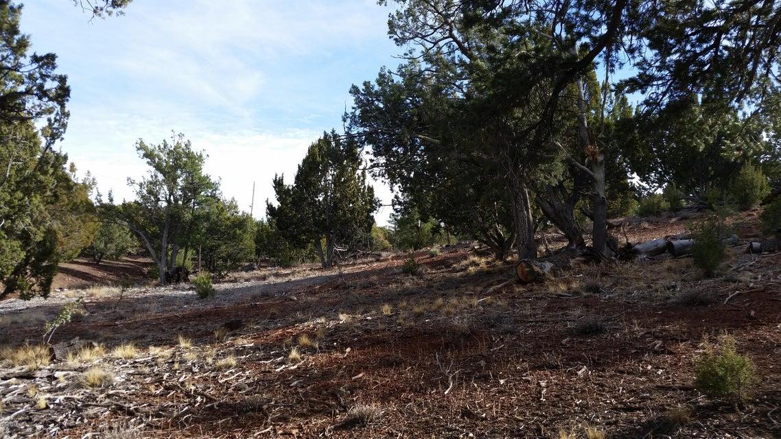 94 N MOUNTAIN PINE Road Vernon, AZ 85940 - MLS #: 5744258