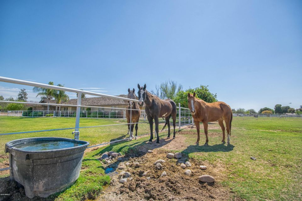 MLS 5751020 1625 E PECOS Road, Chandler, AZ Chandler Horse Property for Sale