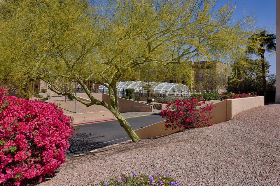 MLS 5751904 7830 E CAMELBACK Road Unit 101 Building 24, Scottsdale, AZ 85251 Scottsdale AZ Scottsdale Shadows