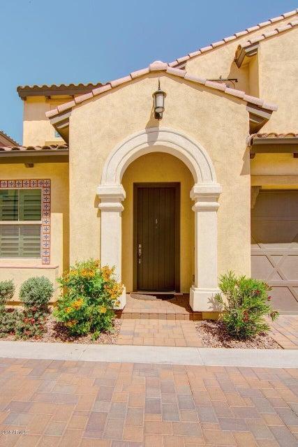 MLS 5753816 1910 W Grand Canyon Drive, Chandler, AZ Community Pool