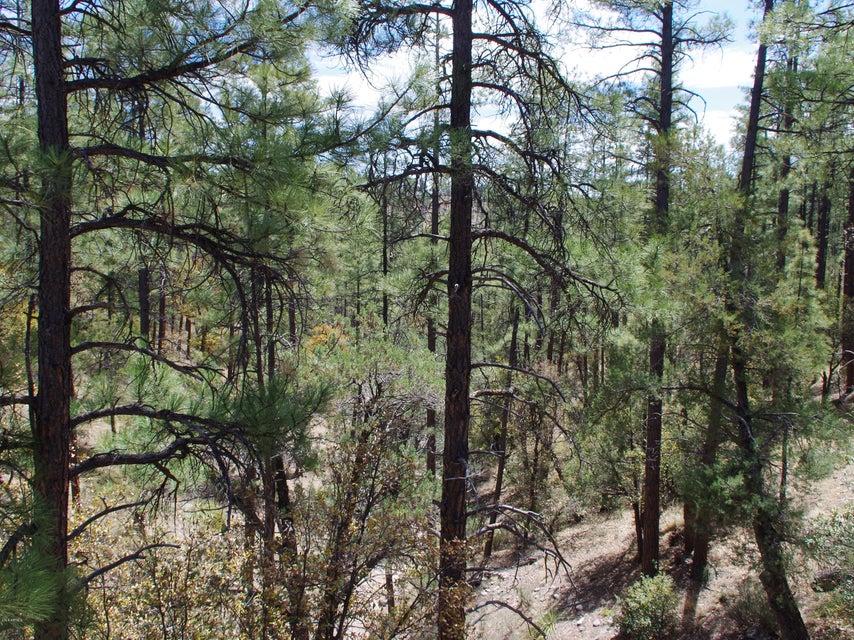 MLS 5759918 359 S Canyon Drive, Payson, AZ Payson AZ Gated