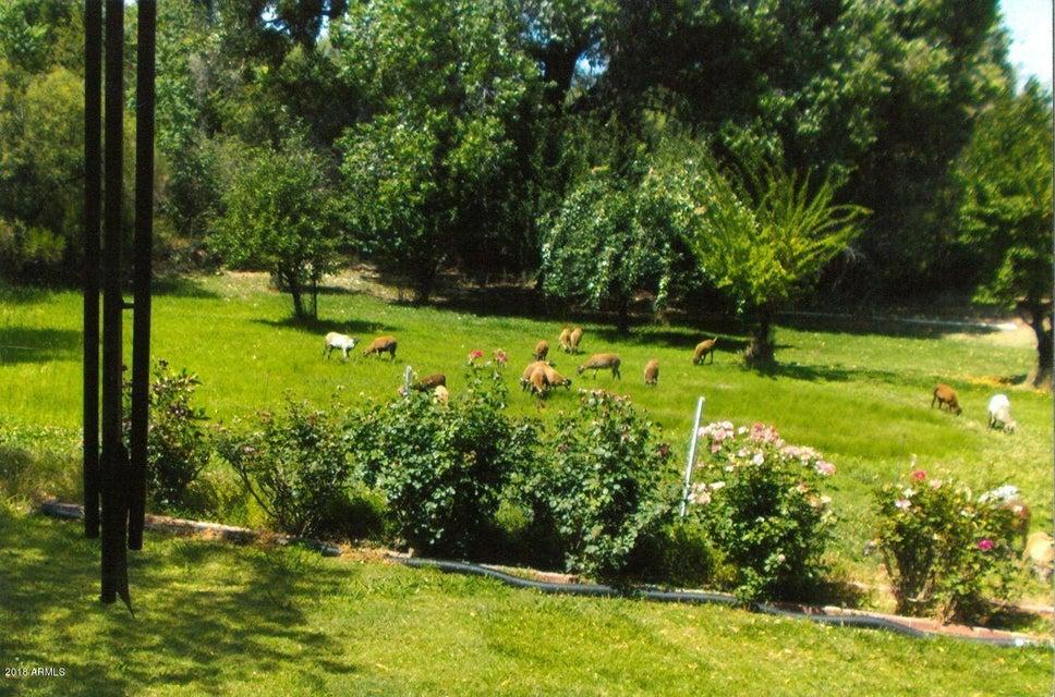MLS 5720057 100 S Elm Drive, Payson, AZ Payson AZ Equestrian