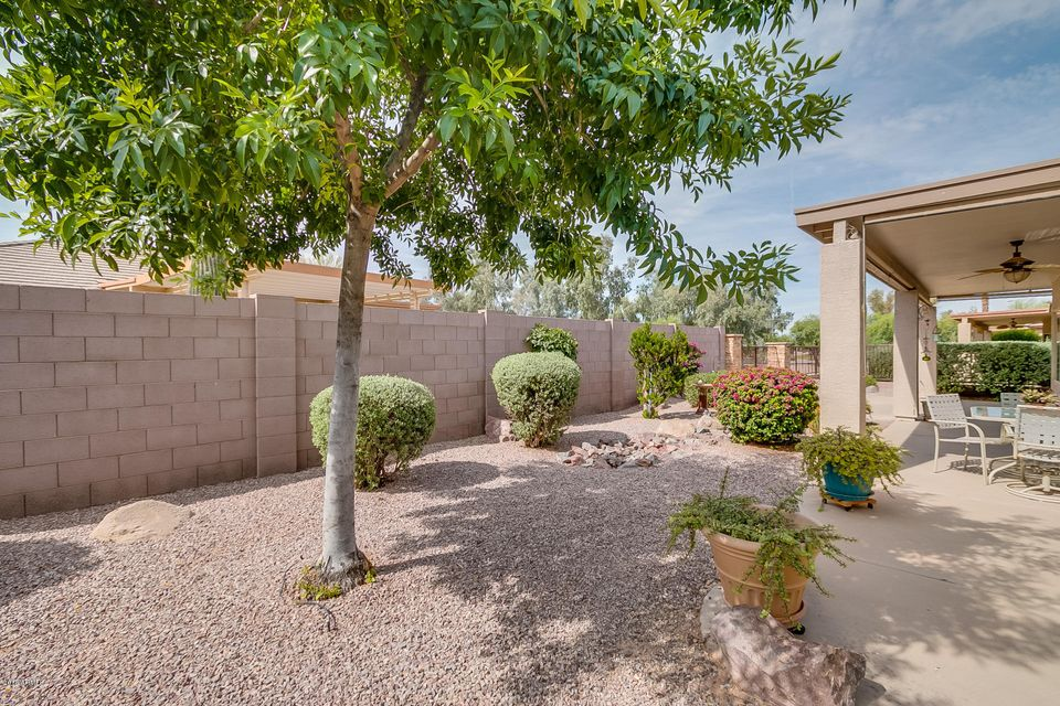 MLS 5763165 3467 E WATERVIEW Drive, Chandler, AZ 85249 Chandler AZ Springfield Lakes