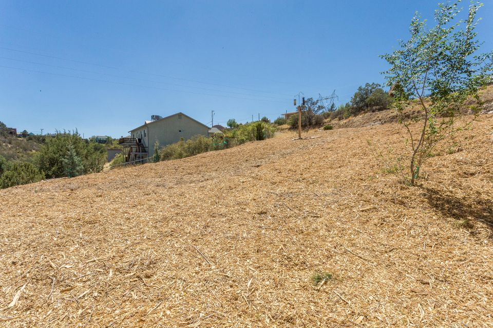 MLS 5765095 1657 N NOMADIC DESERT Trail, Prescott, AZ Prescott AZ Affordable