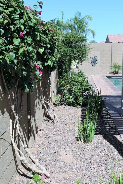 MLS 5761093 1500 E SAGITTARIUS Place, Chandler, AZ 85249 3 Bedrooms