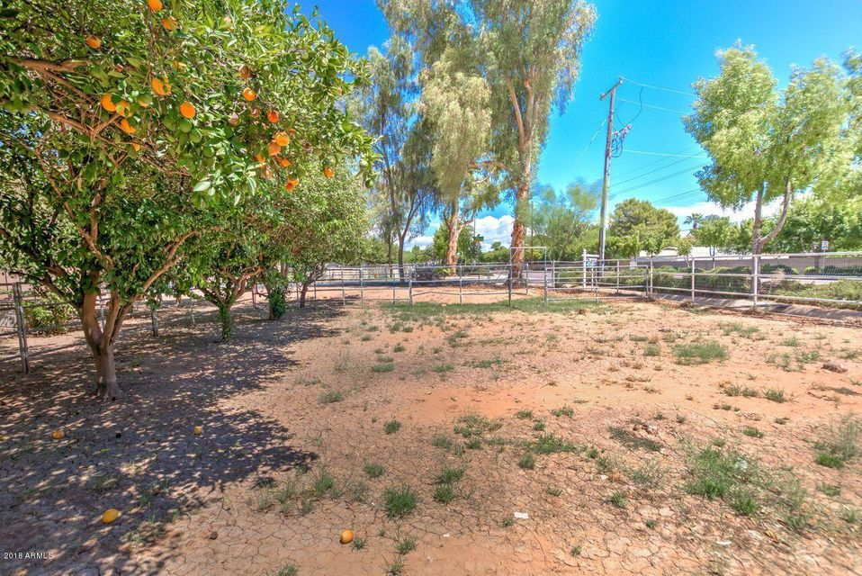 MLS 5766243 545 E COUNTRY PLAZA --, Gilbert, AZ College Park Country Estates in Gilbert