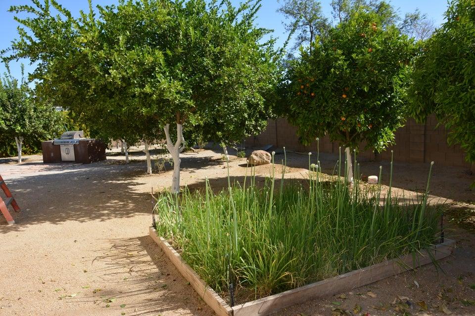 MLS 5766683 16040 W Orangewood Avenue, Litchfield Park, AZ Litchfield Park Horse Property for Sale