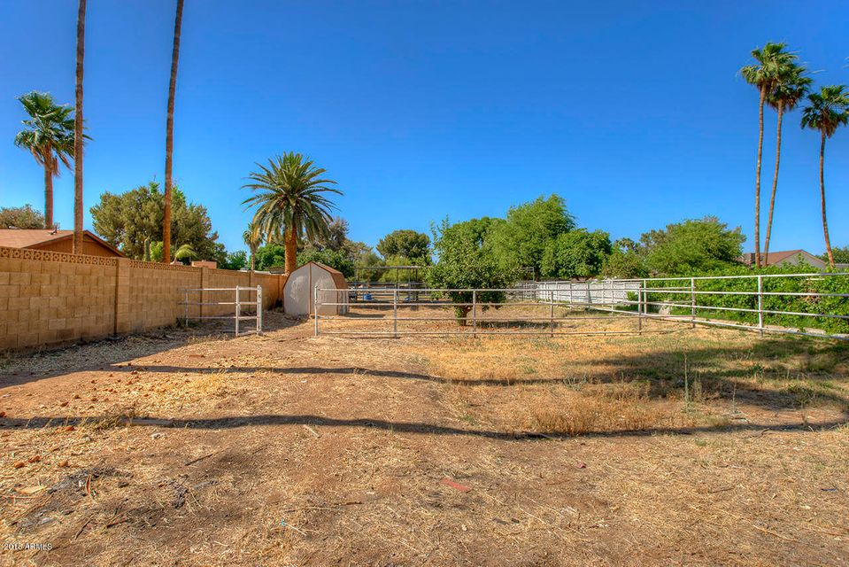 MLS 5769419 405 N LIZANNE Way, Tolleson, AZ 85353 Tolleson AZ Private Pool
