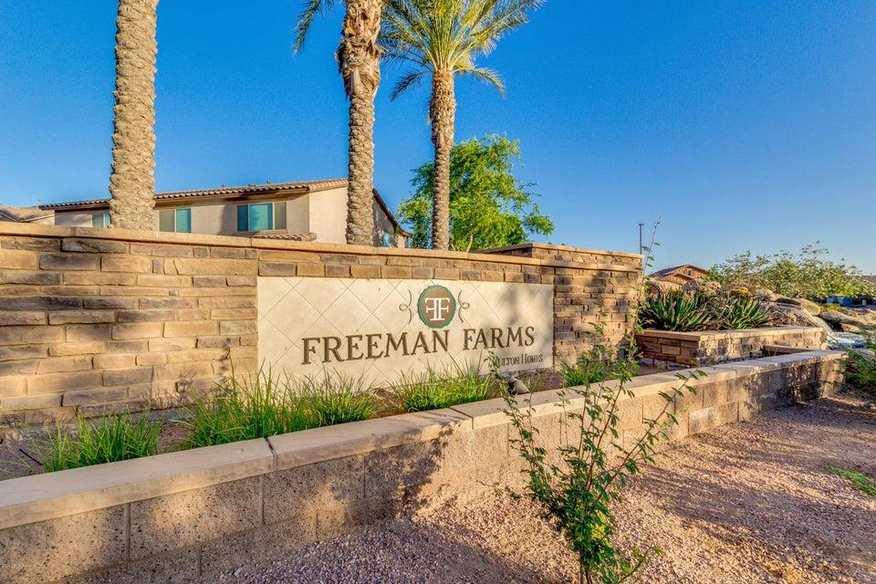 MLS 5770984 2487 E ORLEANS Drive, Gilbert, AZ 85298 Gilbert AZ Freeman Farms