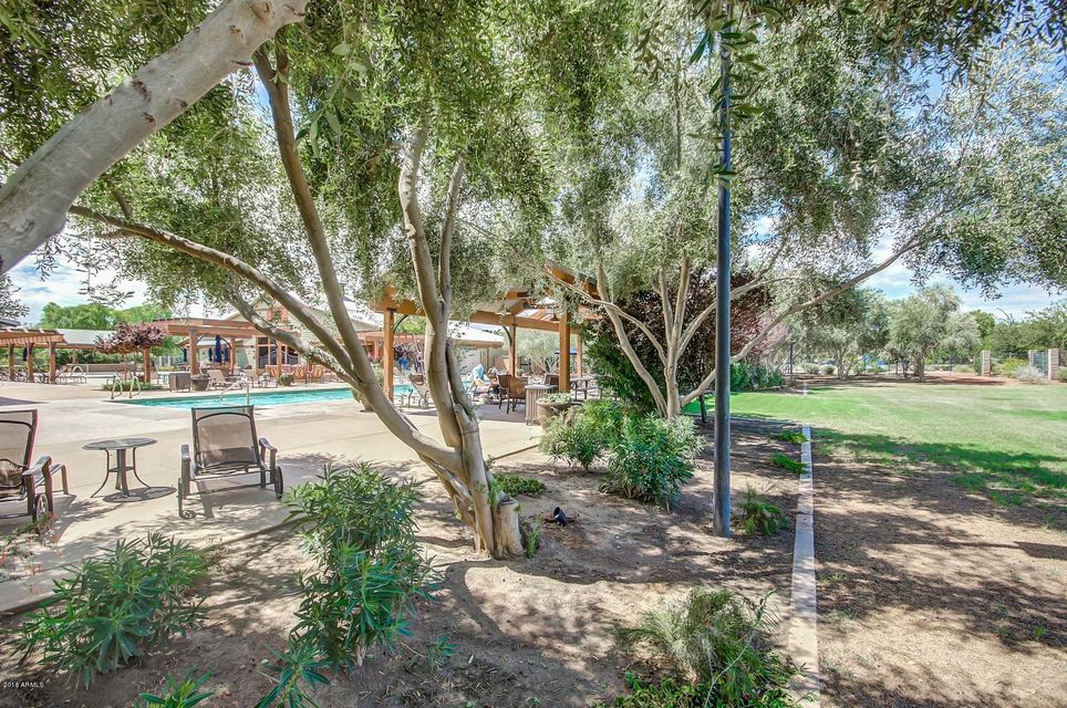 MLS 5770607 15183 W WINDROSE Drive, Surprise, AZ 85379 Surprise AZ Marley Park