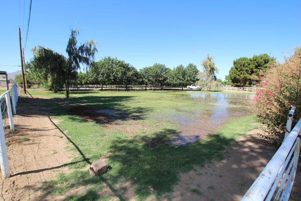 MLS 5772516 17534 E BROOKS FARM Road, Gilbert, AZ 85298 Gilbert AZ Equestrian