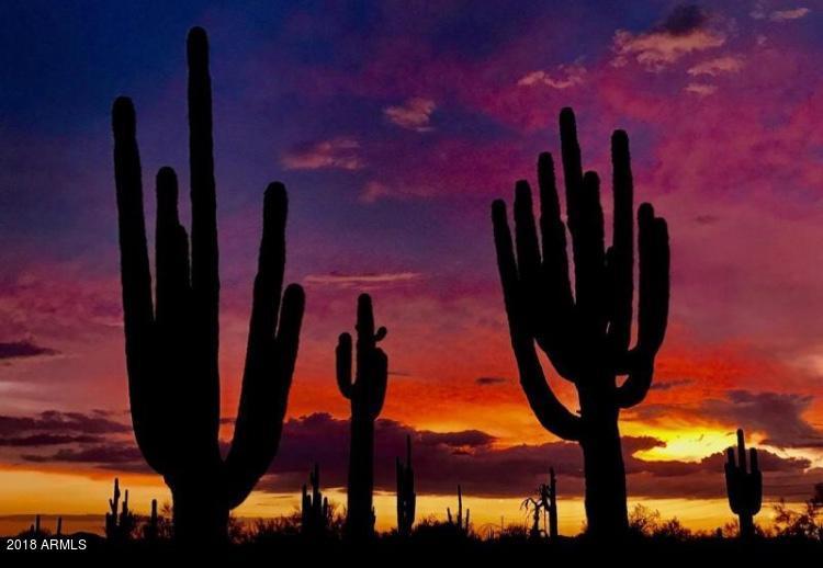 MLS 5772961 1214 W 5TH Street Unit 1001, Tempe, AZ 85281 Tempe AZ Newly Built