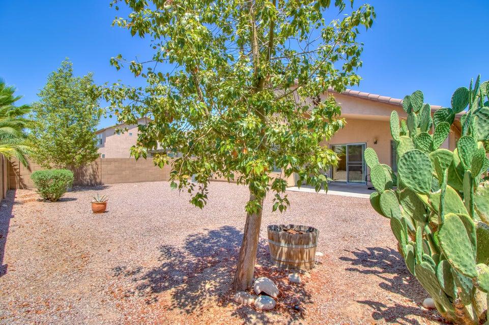 MLS 5774488 45065 W Buckhorn Trail, Maricopa, AZ Maricopa AZ Alterra
