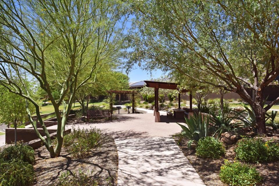 MLS 5775060 3126 E Cat Balue Drive, Phoenix, AZ 85050 Phoenix AZ Desert View