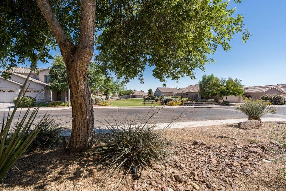 MLS 5778246 3601 N 129TH Avenue, Avondale, AZ 85392 Avondale AZ Three Bedroom