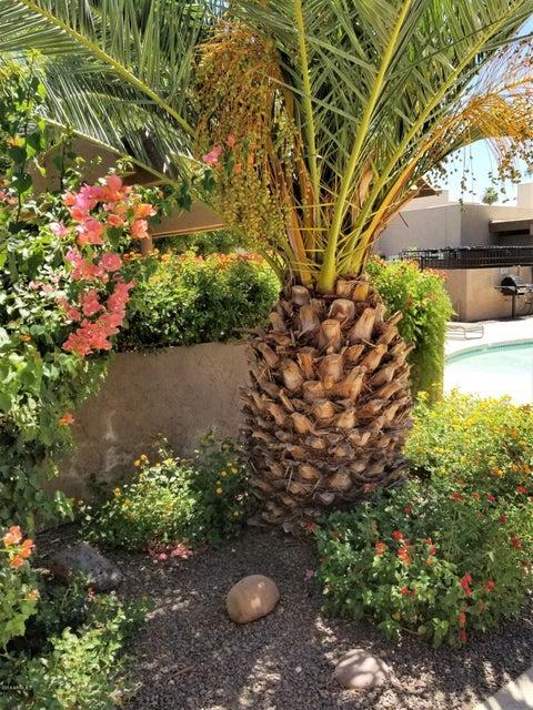 MLS 5779574 8574 E INDIAN SCHOOL Road Unit B, Scottsdale, AZ 85251 Scottsdale AZ Golf