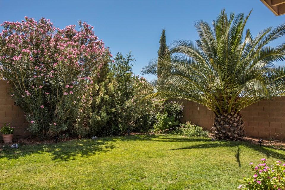MLS 5783423 31541 N SUNDOWN Drive, San Tan Valley, AZ 85143 San Tan Valley AZ Rancho Bella Vista