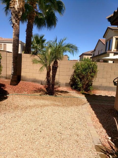 MLS 5784554 17496 W ELAINE Drive, Goodyear, AZ 85338 Goodyear AZ Cottonflower