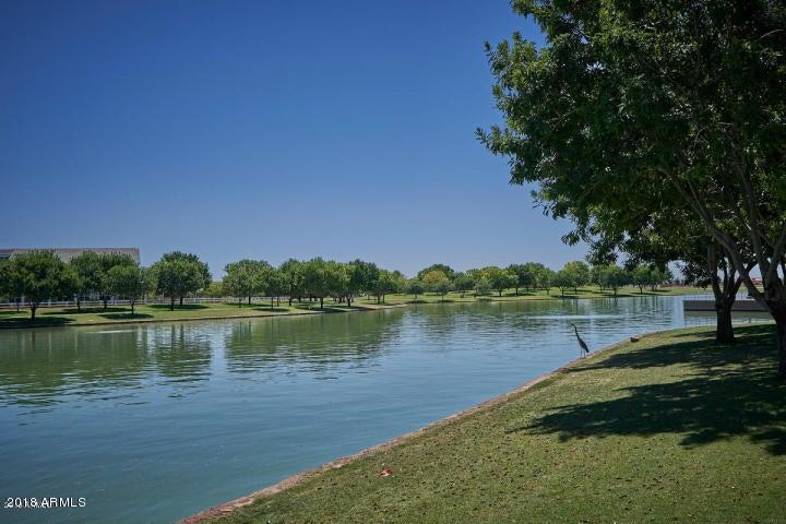 MLS 5789557 3560 E PALO VERDE Street, Gilbert, AZ 85296 Gilbert AZ Morrison Ranch